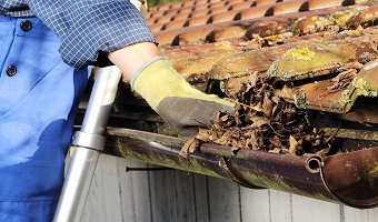 Gutter Cleaner Northern Beaches